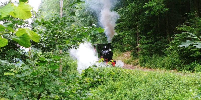 SWB-Dampflok auf der Strecke